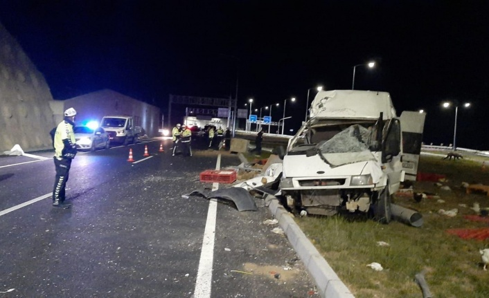 Hayvanları taşıyan minibüs refüje çıkıp aydınlatma direğini devirdi: 1'i ağır 2 yaralı