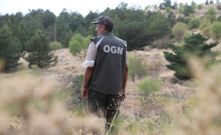 Elazığ'da, ormanlık alanlarda sıkı denetim