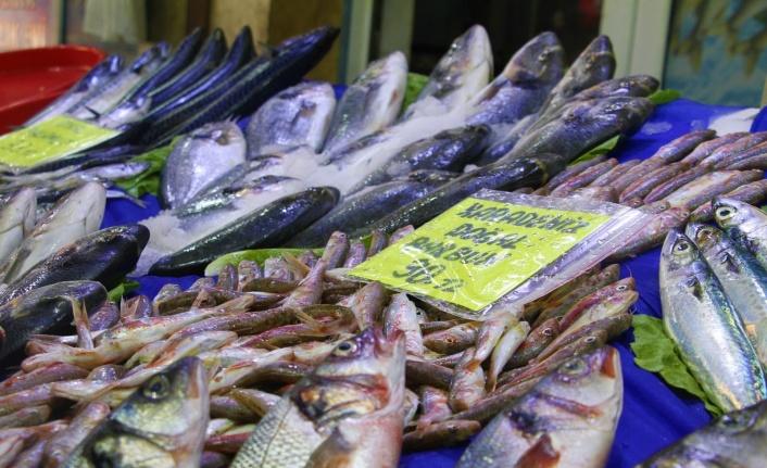 Av sezonu açıldı, yarımada konumundaki Elazığ'da balıklar tezgahlardaki yerini aldı