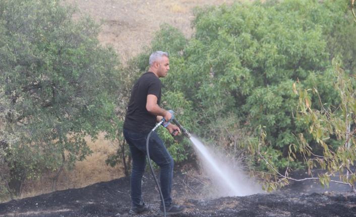 Elazığ'da bahçe yangınında 20 dönüm alan zarar gördü