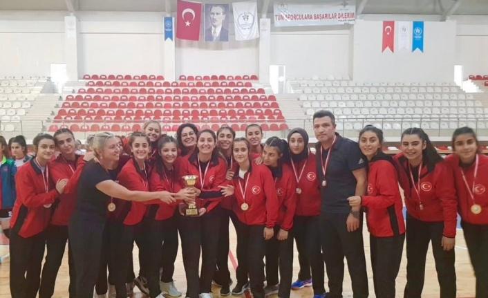 Elazığ Gençlik ve Spor Kulübü, 2. Lig'de