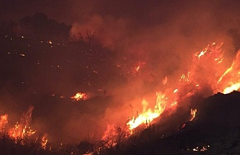 Bingöl'deki Orman Yangını Kontrol Altına Alındı