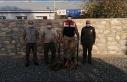 Elazığ'da yasa dışı avlanan 2 kişiye ceza...
