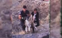 Elazığ'da yaralı halde bulunan köpek itfaiye ekipleri tarafından kurtarıldı