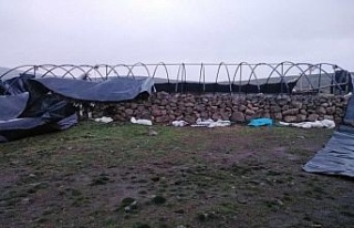 Elazığ'da fırtına direkleri devirdi, çatıları...