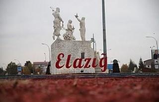 Elazığ'ın 3 ilçesinde vakalar sıfırlandı,...