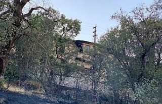 Elazığ'da çıkan yangında bir ev ve bahçeler...