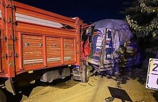 Kazada kamyon hurdaya döndü, sıkışan sürücüyü...