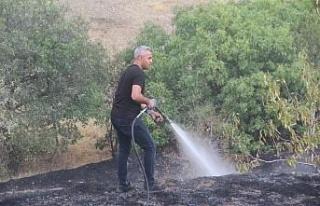 Elazığ'da bahçe yangınında 20 dönüm alan...