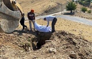 Elazığ'da etrafa saçılan kemikler toplanıp...