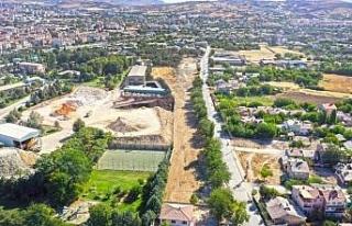 Elazığ'da kullanılamaz durumdaki çamlık alan,...
