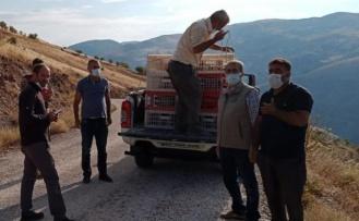 Elazığ'da 850 keklik doğaya salındı