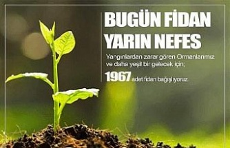 Elazığspor, 1967 fidan bağışlayacak