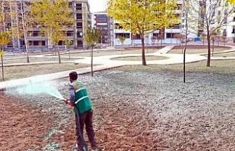 Elazığ Belediyesinden soğuğa dayanıklı yeşillendirme çalışmaları