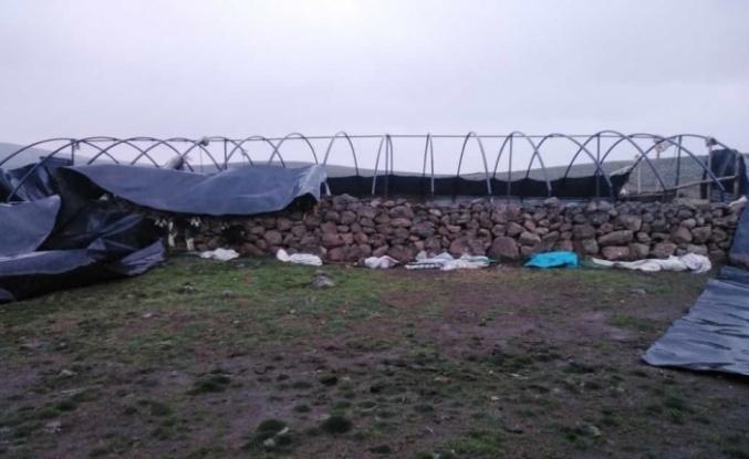 Elazığ'da fırtına direkleri devirdi, çatıları uçurdu 10 kuzu telef oldu