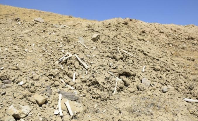 Elazığ'da içme suyu yolu mezarlık içinden geçince, kemikler etrafa saçıldı